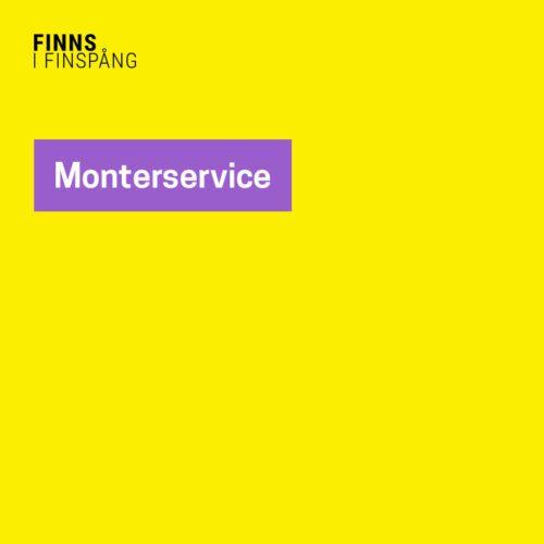 Monterservice